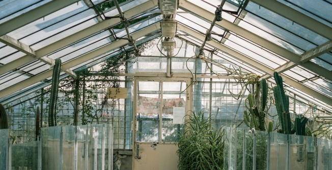 Edwardian Conservatory in Ashby St Mary
